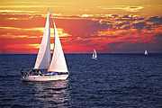 Sail Boats Posters - Sailboats at sunset Poster by Elena Elisseeva