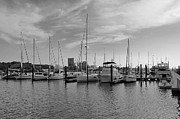 Docked Sailboat Framed Prints - Sailboats Await Framed Print by Francie Davis