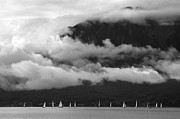 Colleen Williams - Sailboats Clouds...