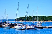 Docked Sailboats Framed Prints - Sailboats Docked in Bar Harbor Framed Print by Tara Potts