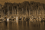 Sailboats In Water Prints - Sailboats I Print by Jani Freimann