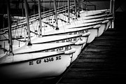Docked Boats Photo Prints - Sailboats in Newport Beach California Picture Print by Paul Velgos