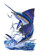Striped Marlin Painting Posters - Sailfish Poster by Carey Chen