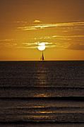 Aruba Prints - Sailing at Sunset Print by David Letts