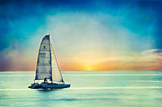 Donna Tomlin - Sailing at Sunset