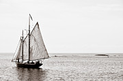 Tatiana Parmeeva - Sailing in Cape Cod