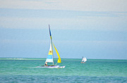 Sailing In The Gulf Of Mexico Print by Bill Cannon