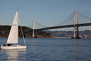 Bay Bridge Photos - Sailing in The San Francisco Bay - 5D20830 by Wingsdomain Art and Photography