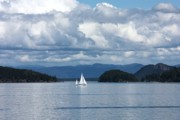 San Juan Prints Prints - Sailing in the San Juans Print by Carol Groenen