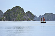 Sami Sarkis Posters - Sailing junk boats in Halong Bay Poster by Sami Sarkis
