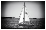 Sailboat Images Metal Prints - Sailing LBI Metal Print by John Rizzuto