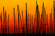 Puget Sound Photos - Sailing Marina Sunset by Puget  Exposure
