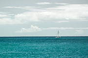 Jason Bartimus - Sailing on a Turquoise...