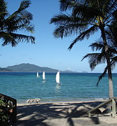 Whitsunday Photos - Sailing Paradise by Carl Koenig