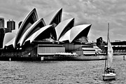 Angela Seager - Sailing Past Sydney...