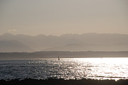 Sunset Sailing Prints - Sailing Sunset Puget Sound Print by Carol  Eliassen