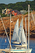 Summer Sports Framed Prints - Sailing Through Framed Print by Joann Vitali