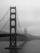 Sausalito Framed Prints - Sailing Under the Golden Gate Bridge BW Framed Print by Connie Fox