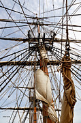 Sails Prints - Sails Aboard the HMS Bounty Print by Michelle Wiarda