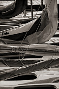 Sails Prints - Sails Print by Jeff Breiman