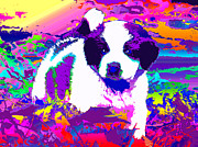 Pup Digital Art - Saint Bernard Puppy Rainbow by Jacqueline Barden