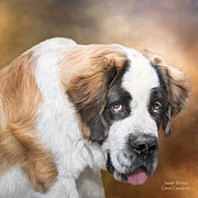Puppy Art Prints - Saint Bernie Print by Carol Cavalaris
