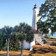 Lighthouse Photos - Saint Marks Lighthouse by Lynn Palmer