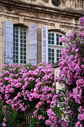 Saint-remy De Provence Framed Prints - Saint Remy Windows Framed Print by Brian Jannsen