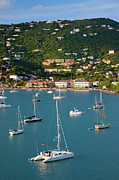 Charlotte Amalie Prints - Saint Thomas Harbor Print by Brian Jannsen
