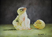 Portret Art - Saker Falcon Chick next to shell by Erna Goudbeek