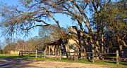 Log Cabin Prints - Salado Early Texas Log Cabin Print by Linda Phelps