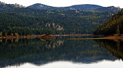 In Pyrography Prints - Salam  Lake Print by Larry Stolle