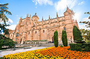 Southern Province Art - Salamanca by JR Photography