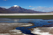 Salt Flats Posters - Salar de Surire and Puquintica volcano Poster by James Brunker