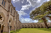 Oils Posters - Salisbury Cathederal Cloisters Poster by David Dwight