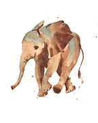 Resolve Framed Prints - Sally Softly Elephant Framed Print by Alison Fennell