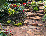 Stone Steps Posters - Sallys Garden Poster by Nancy Harrison