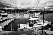 Westin Prints - salmon fishing charter boats coal harbour marina Vancouver BC Canada Print by Joe Fox