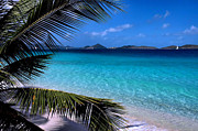 Turquoise Metal Prints - Saloman Beach - St. John Metal Print by Stephen  Vecchiotti