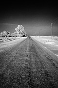 Winter Roads Framed Prints - salt and grit covered rural small road in Forget Saskatchewan Canada Framed Print by Joe Fox