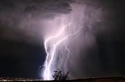 Paul Marto - Salt Lake Lightning