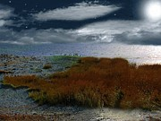 Sea Moon Full Moon Posters - Salt Marsh at the Edge of the Sea Poster by RC deWinter