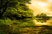 England Art - Salt Marsh Kittery Maine by Bob Orsillo