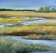 Tidal Basin Paintings - Salt Marsh by Sally Simon