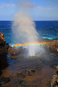 Salt Spray Rainbow Print by Mike  Dawson