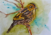 Beverley Harper Tinsley Painting Prints - Saltmarsh Sparrow Print by Beverley Harper Tinsley