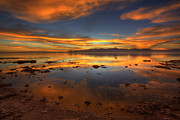 Desert Lake Photo Posters - Salton Sea Color Poster by Peter Tellone