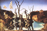 Salvador Dali Print by Christo Grudev