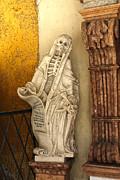 Gregory Dyer - Salzburg Skeleton