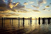 Brent Easley - Samish Bay Sunset